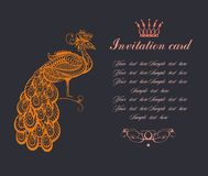 Peacock background royalty free illustration