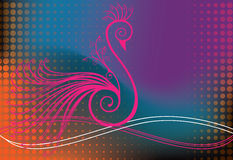 Peacock or bird in swirls Stock Images
