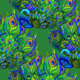 Peacock birds. Beautiful green seamless pattern background. Vector illustration. Beautiful seamless peacock pattern background. Peacock birds with fully fanned Stock Photography