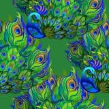 Peacock birds. Beautiful green seamless pattern background. Vector illustration. Stock Photography
