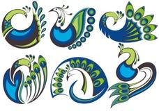Peacock birds Royalty Free Stock Image