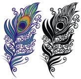 Φτερό Peacock για το σχέδιό σας r απεικόνιση αποθεμάτων