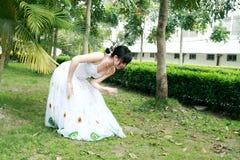 Peacock dance Stock Photography