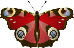 Peacock eye butterfly Aglais io, Inachis io, Nymphalidae. Blue, yellow, red colors. stock illustration