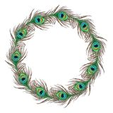 Peacock feather banner. Elegant peacock feather design circle stock illustration