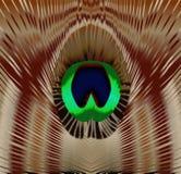 Peacock Feather Eye Stock Photos