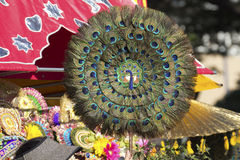 Peacock Feather Fan Stock Photo