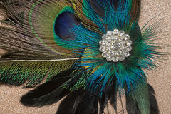 Peacock Feather Hair Clip Royalty Free Stock Images