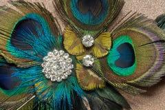Peacock Feather Hair Clip Stock Photography