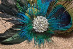 Peacock Feather Hair Clip Stock Image