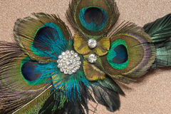 Peacock Feather Hair Clip Royalty Free Stock Image