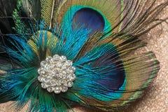 Peacock Feather Hair Clip Stock Photos