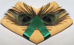 Peacock feather napkin. Peacock feather on napkin with green ribbon Royalty Free Stock Photos