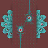 Peacock feather retro background Stock Images