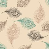 Peacock feather seamless pattern on the background Royalty Free Stock Images