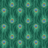 Peacock feather seamless pattern stock illustration