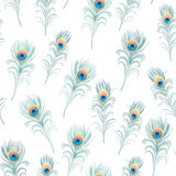 Peacock feathers cyan seamless vector print Stock Image