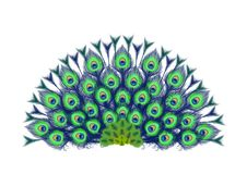 Peacock feathers fan royalty free illustration