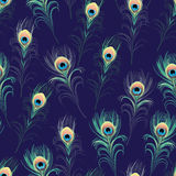 Peacock feathers navy seamless vector print Royalty Free Stock Photography