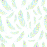Peacock Feathers Seamless Pattern Vector Stock Photography