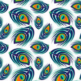 Peacock feathers seamless pattern Royalty Free Stock Photo