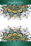 Peacock feathers, vector design of cover Stock Photo