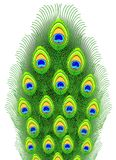 Peacock feathers. Vector illustration. Fragment Royalty Free Illustration