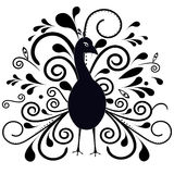 Peacock - Illustration. Stock Photos