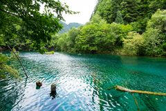 Peacock lake, one of the largest lake in Jiuzhaigou national par royalty free stock photo