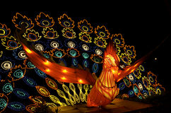 Peacock lantern at Lantern Festival Stock Image