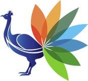 Peacock logo Stock Photography