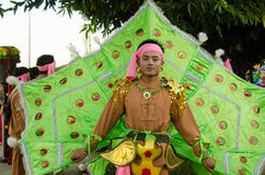 Peacock Man, Chiang Mai Parade. Chiang Mai, Thailand - December 3, 2012: Young man dressed in a traditional peacock costume for the annual King's Birthday Parade Royalty Free Stock Photo