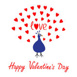 Peacock Open red heart set tail. Zoo animal collection. Exotic tropical bird. Cute cartoon character. Blue color. Happy Valentines Stock Images