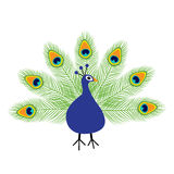 Peacock open tail. Feather out. Beautiful Exotic tropical bird. Zoo animal collection. Cute cartoon character. Decoration element. Stock Photos