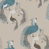 Peacock pattern Royalty Free Stock Images