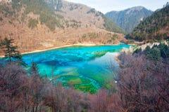 Peacock river in Jiuzhai Valley. The peacock river(The five flower lake) in Jiuzhai Valley, Sichuan of China Stock Photos