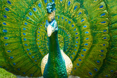 Peacock Statue Stock Image
