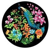 Peacock. stock illustration