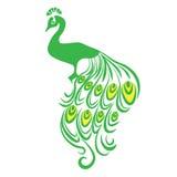peacock Bird Animal vector design cartoon illustration abstract design silhouette Royalty Free Stock Photo