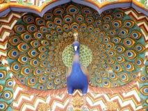 peacok för stadsjaipur slott royaltyfri bild