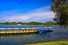 Peadal boat in lake Royalty Free Stock Photos