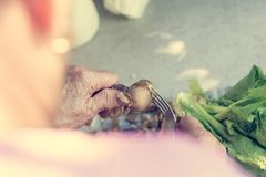 peaing potatoe的年长手特写镜头  免版税库存照片