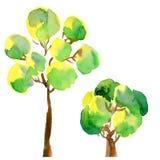 peair drzewo Obrazy Royalty Free