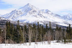 Peak in the Alaska Range. In the Spring Stock Images