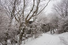 The peak of the beppu ropeway is covered with snow. Impress the audience. stock photography