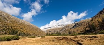 Peak of Care Alto - Adamello Trento Italy royalty free stock image
