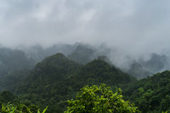 Peak in Cat Ba National Park. Royalty Free Stock Image
