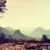 The peak of cliff with bush of heather. Beautiful valley of rocky mountains park. Stock Image