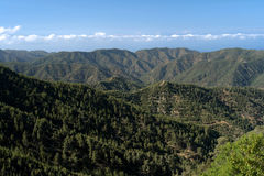 Peak of cyprus island, troodos mountains, Royalty Free Stock Photos