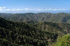 Peak of cyprus island, troodos mountains,. Landscape from troodos mountains in cyprus island Royalty Free Stock Photos